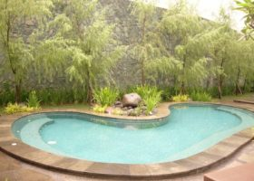 kolam renang dengan tanaman berdaun halus. club house terinspirasi taman gaya Jepang.