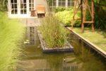 taman minimalis dengan pulau taman di tengah kolam.