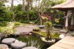 taman tropis di halaman belakang rumah dengan kolam dan tanaman air.