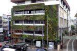 vertical garden pada fasad bangunan di perkotaaan.