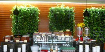 vertikal garden pada area di bawah naungan-di dalam ruangan.