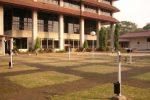 pohon glodokan tiang pada kolom bangunan rektorat UI.