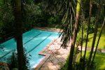 kolam renang rumah alexandrea kemang.